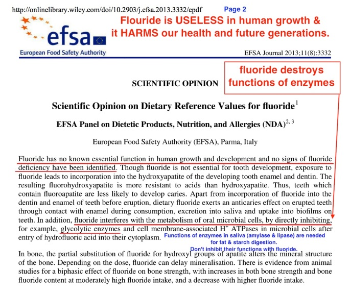 04 efsa f enzyme inhibit